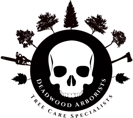 Deadwood Tree Services