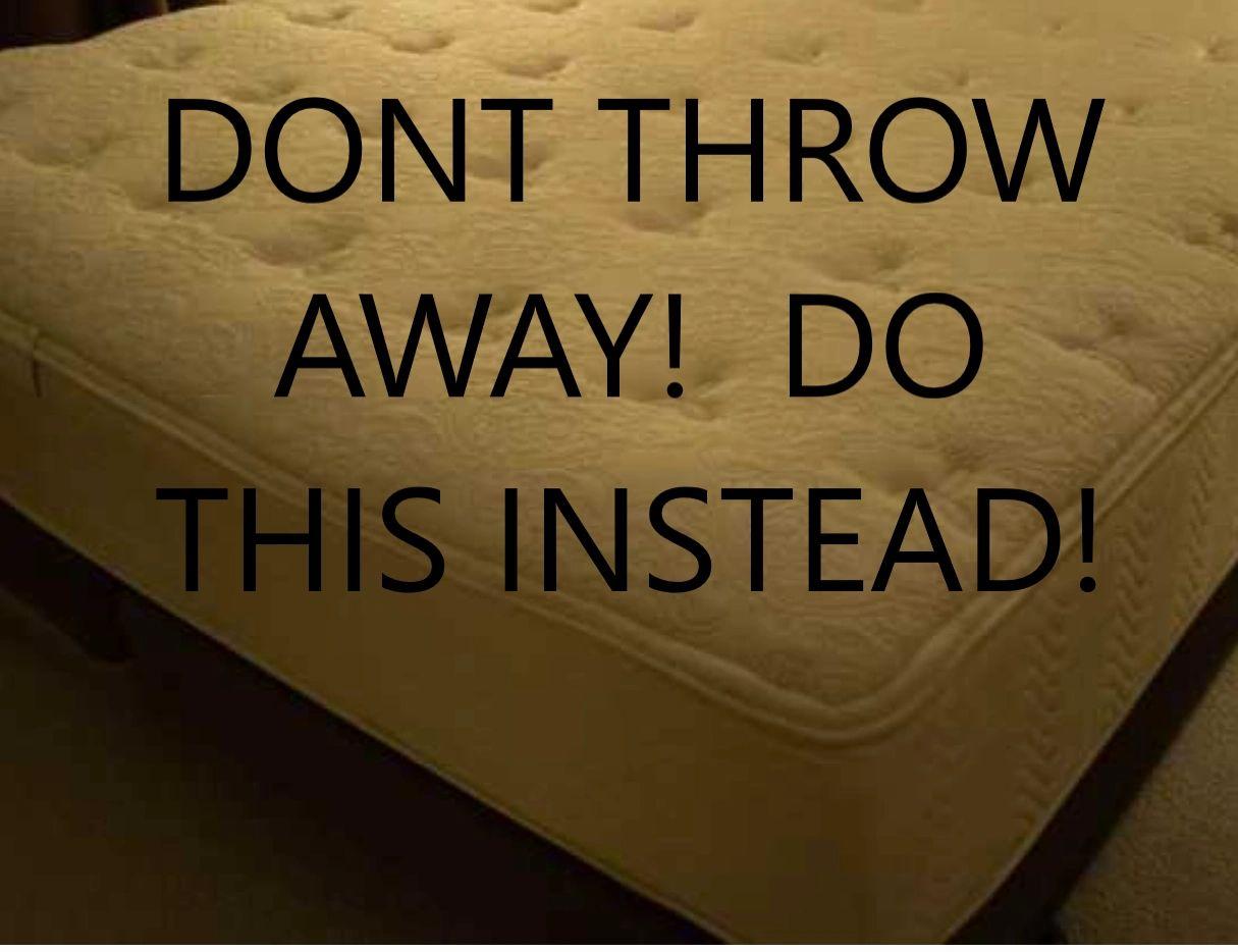 Mattress Upcycle Foam Dog Bed Headboard Storage Bench