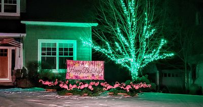 Flamingo surprise lawn display. Night time yard display & yard card party decorations.