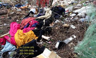 Garbage Cleanup Bellingham Garbage Cleanup Blaine Garbage Cleanup Maple Falls Skagit Garbage Cleanup
