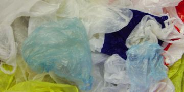 Plastic bags and overwrap
