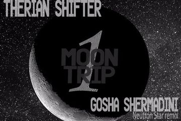 'Moon Trip 1' by Therian Shifter