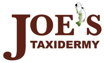 Joe's Taxidermy