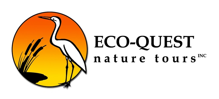 Eco-Quest Nature Tours