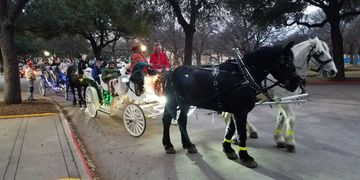 Highland Park Carride rides, Christmas Light rides. Percherons teams, raber vis a vis limo