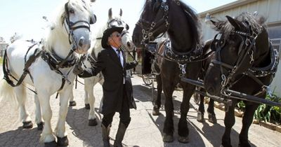 Horse drawn funeral Highland Park Carriage Rides Fall Festivals Petting Zoo