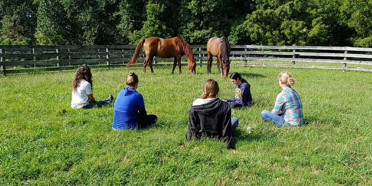 Ginny Jablonski, Medicine Horse, Equine Therapy, Animal Communication, H
