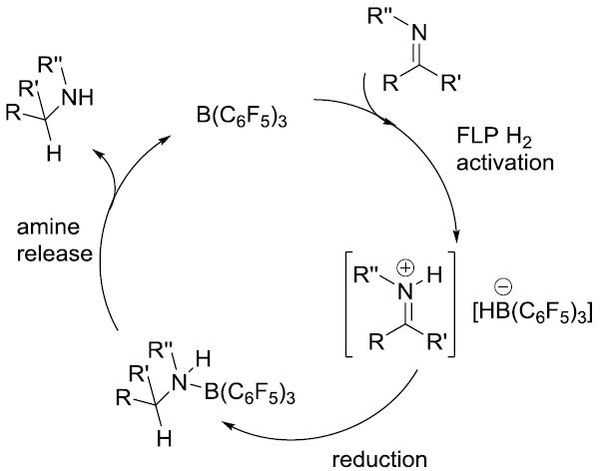 Imine hydrogenation catalysed by a Frustrated Lewis Pair (see: Org. Biomol. Chem., 2008, 6, 1535).