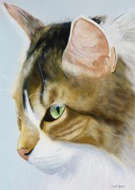 """Tabitha"" - 11 x 14 oil on canvas - $150"
