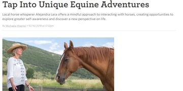 #parkcityhorseexperience #horsehealing #equineassistedlearning #horsemindfulness