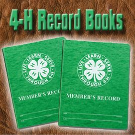 Image result for 4H Records