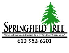 springfield tree and land