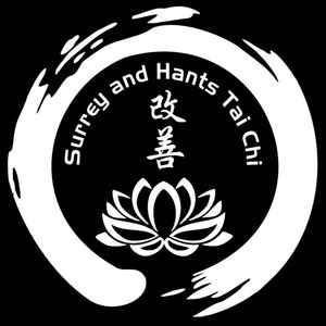 Surrey and Hants Tai Chi and Qigong friendly, authentic classes for beginners, pay when you come