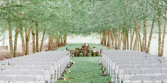 Rows of river birches create our most popular site for outdoor weddings. Carla Gates Photography