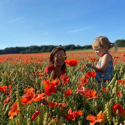 """In Flanders Fields the poppies blow"".  As with many this summer, our Flanders based Instagram follo"