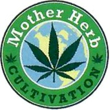 ​Mother  Herb Cultivation