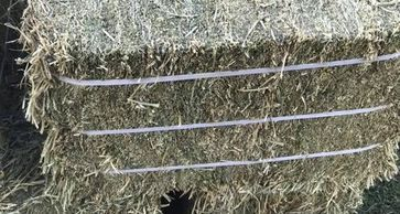 Compressed, 3 strap bales. These bales are heavy but manageable. Limited availability! $17.50 /bale.
