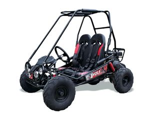 KIDS QUADS ABERDEENSHIRE KIDS BUGGIES YOUTH QUAD ABERDEEN MORAY MORAYSHIRE QUADZILLA CHRISTMAS