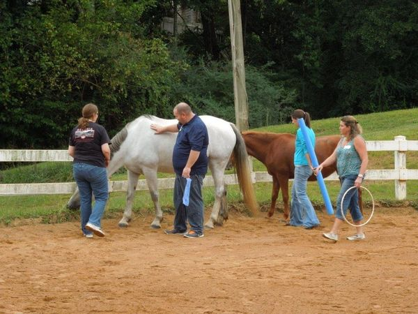 Group of counselors with horses.