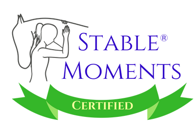 Stable Moments mentoring with horses