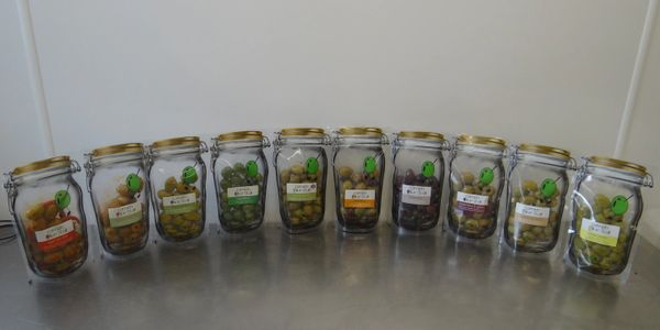 Different types of olives in jars