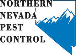 Northern Nevada Pest Control
