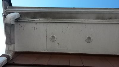 This aluminum gutter is heavily stained with dirt, grime and black algae.