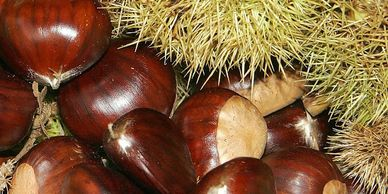 SPICED CHESTNUTS