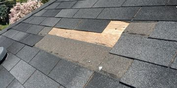 Gutter and Roof Repair