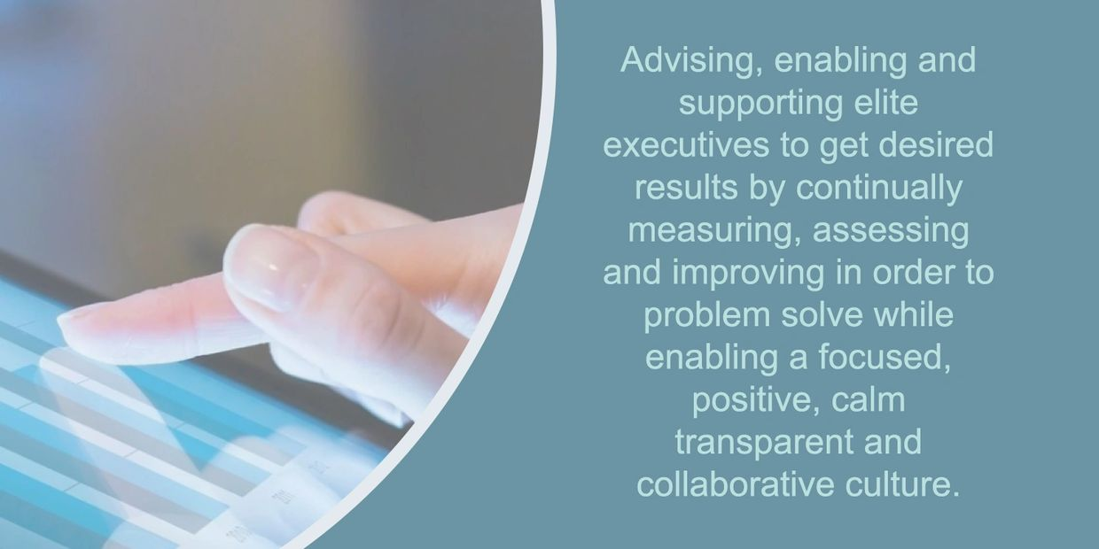 Advising, enabling and support elite executives