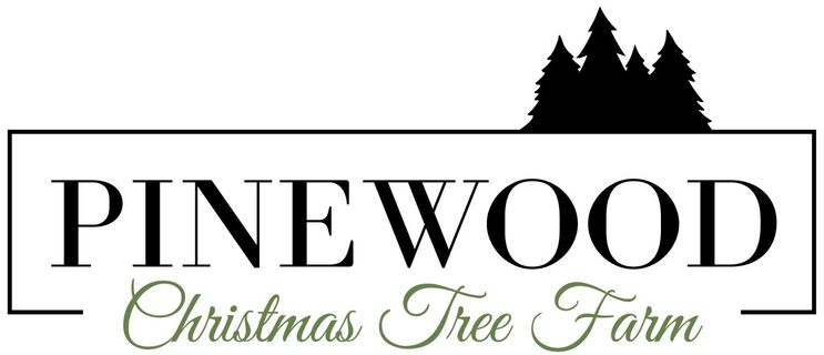 Pinewood Christmas Tree Farm