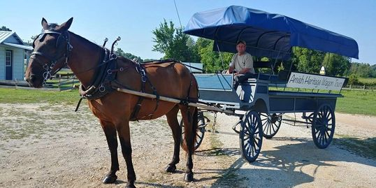Amish wagon tours, wagon tours, amish country, amish in tennesee, amish, amish in ethridge, free map