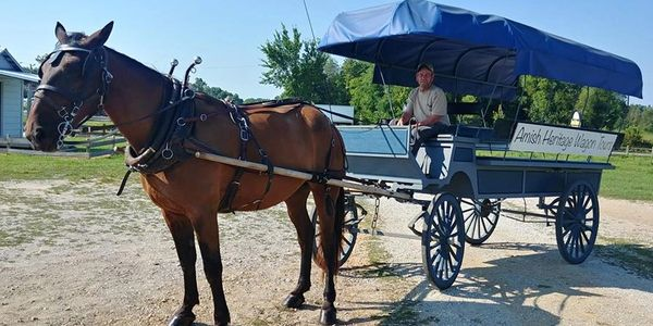Amish wagon tours, amish country, amish in tennesee, amish culture, amish in ethridge, free map