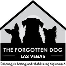 The Forgotten Dog Las Vegas
