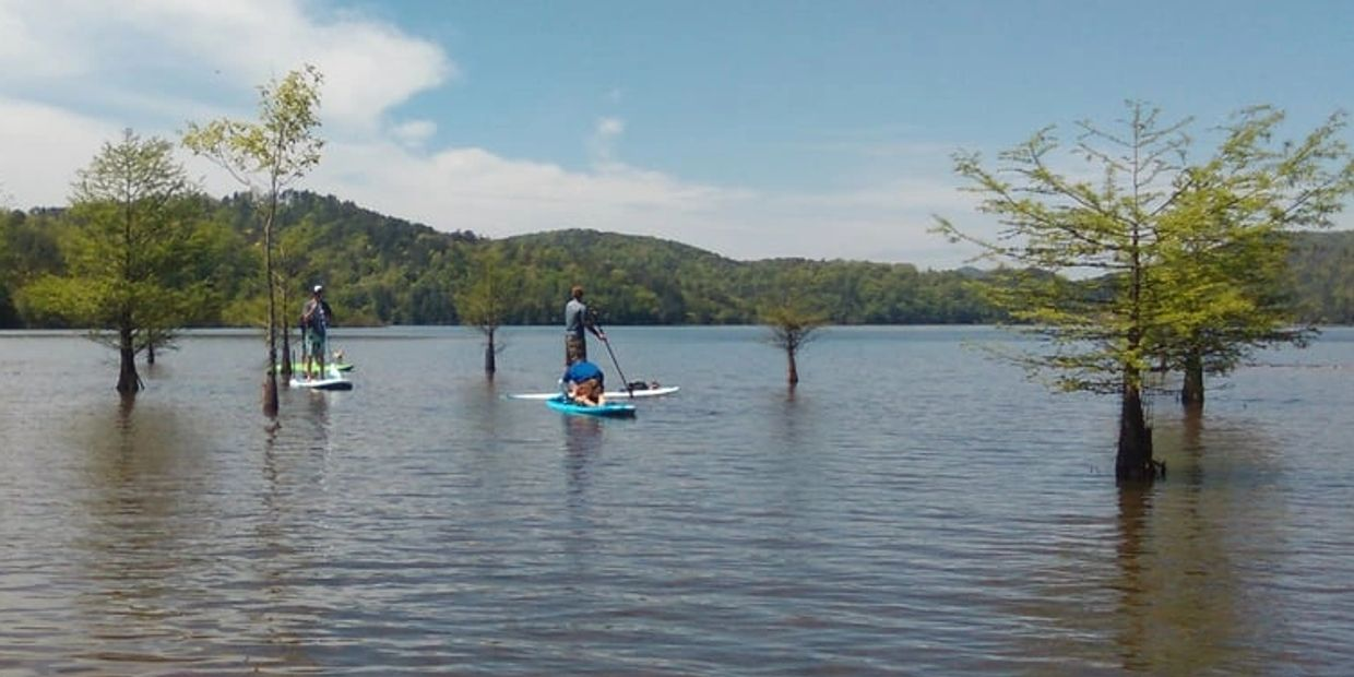 Paddle Lake Ocoee and Parksville Lake on a paddleboard or kayak