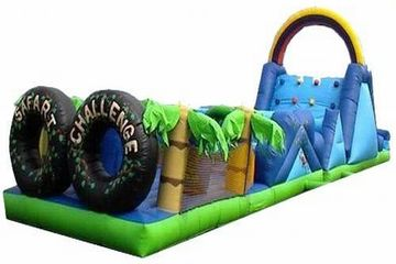 60ft dual lane obstacle course safari theme