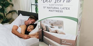 organic bed in a box
