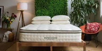 Avocado bed in a box