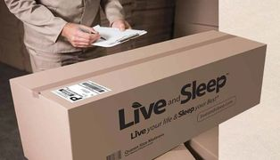 Live and sleep boxed bed