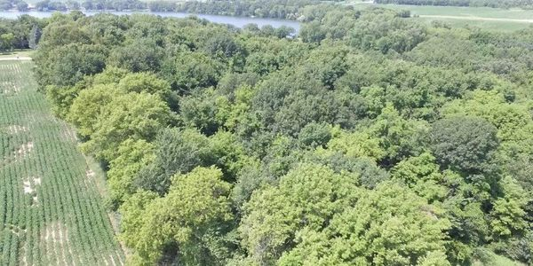 Online Auction Land Lot For Sale Kimball Ave NW Annandale MN 55302 near Granite Lake