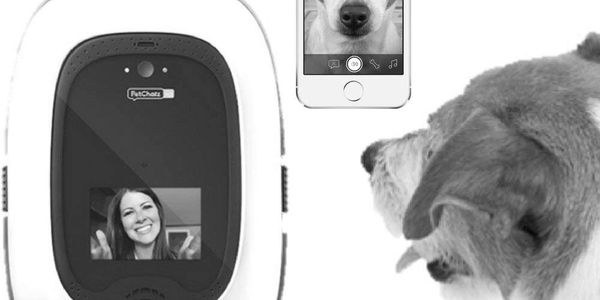 I want to monitor my dog.  Furbo dog camera.