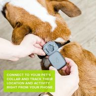 Whistle 3 the best dog tracking device available.