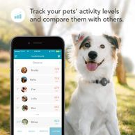 Best dog tracking devices.