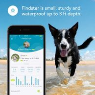 Findster Duo dog tracking device.