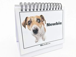 Doggy Moodycards! Great Cubicle Accessories.  Holiday gift guide for the dog fan