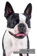 Gifts for the Boston Terrier lover.  Beautiful photography in this Boston Terrier Calendar.  Unique