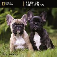 Gifts for the French Bulldog lover.  Beautifully photographed French Bulldog calendar.  Unique dog g