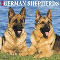 Gifts for the German Shepherd lover.  Beautifully photographed German Shepherd calendar.  Unique dog