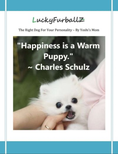 Free E-Book, The Right Dog For Your Personality.  Sign up for your free E-Book today!