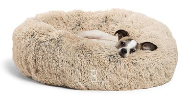 Looking for the best dog bed options?  Look no further.  Dog beds at a bargain.